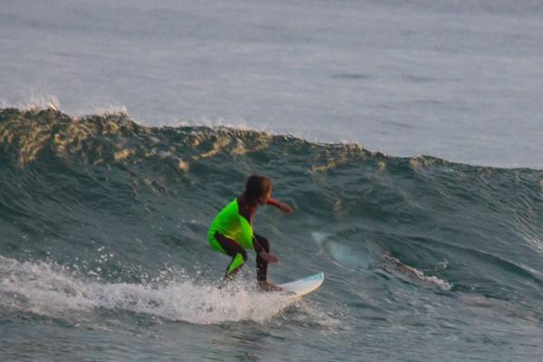 surfea a lado de un tiburón