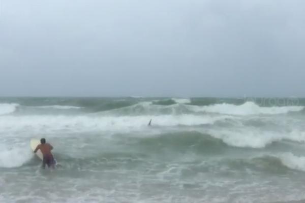 Surfistas ignoran advertencia del huracán Irma