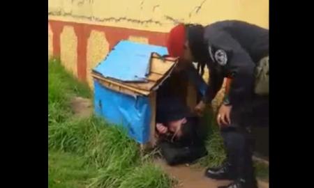 hombre en estado de ebriedad roba casa de un perrito