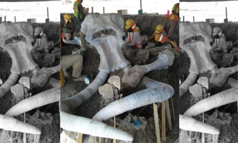 mamut-aeropuerto-santa-lucia